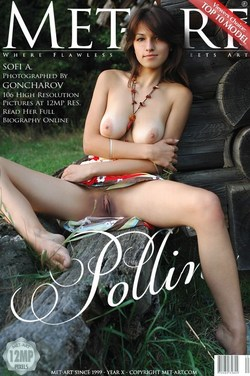 Met-Art natural women: SOFI - POLLINE