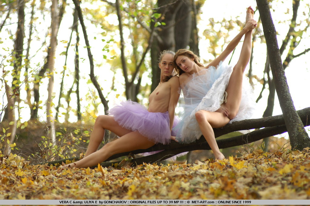 Classics return as the young dancers play in the leaves of fall and practice the forbidden dance.