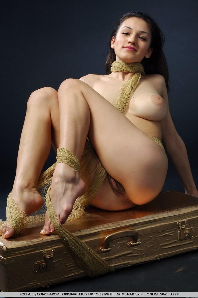 from Giovani nude female vagina art
